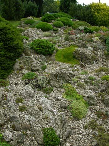 Сады рокарии и альпийские горки