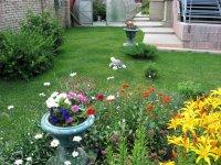 солнечный цветник с укладкой рулонного газона