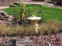 сад с элементами китайского стиля