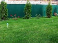 сад в городской зоне